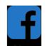 פייסבוק מטב השירות לאומנה